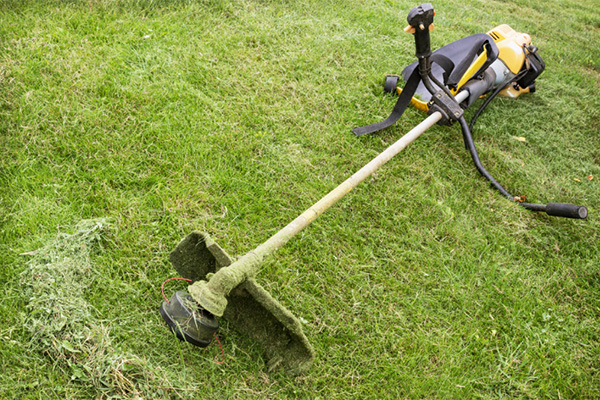 Weed Eater Repair >> Man Avoids Serious Injury And Attempted Robbery Using Weed Wacker