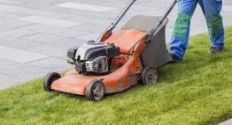 Lawnmower Grass Tips