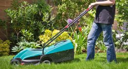 lawnmower boy